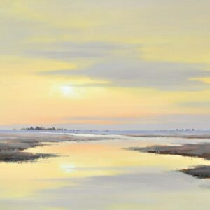 Landschappen, van kust tot polder